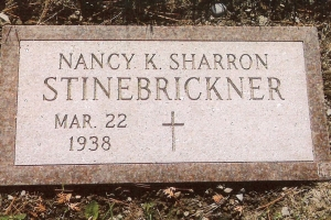 Stinebrickner-flush-marker