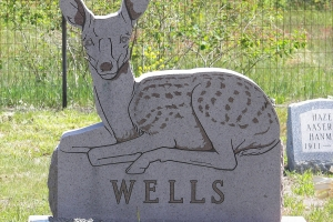 Wells Custom Shape Deer.JPG