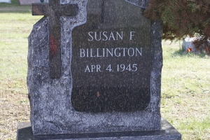 Billington cats eye single monument.jpg