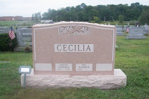 Cecilia Pink Upright.jpg