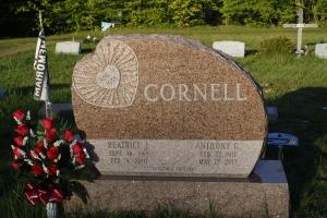 Cornell Pink Upright.JPG